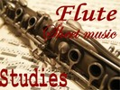 Flute Studies Method and Exercises Books Collection in pdf format